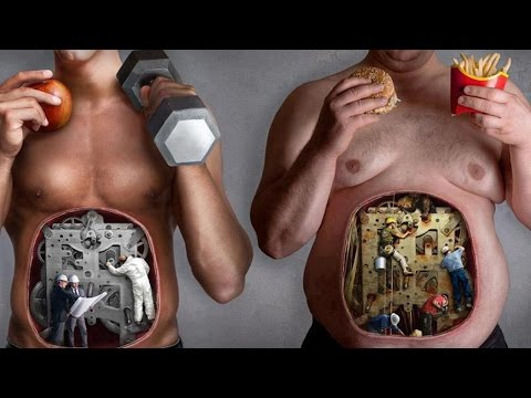 Dieta en la diabetes mellitus tipo 1 º
