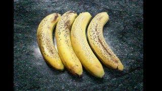 Смотреть онлайн Готовим своими руками банановый ликер