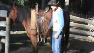 Saddling a horse - Part 3/4