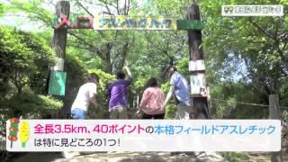 東丹沢グリーンパークのイメージ