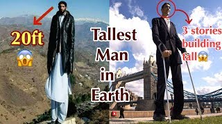 TALLEST MAN ON EARTH   Budchik