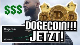 Wie viel sollte ich als Anfanger in Dodecoin investieren?