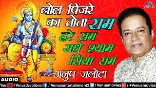बोल पिंजरे का तोता राम हरे राम राधे श्याम   Bol Pinjare Ka Tota Ram   Anup Jalota   Bhajan Prabhat