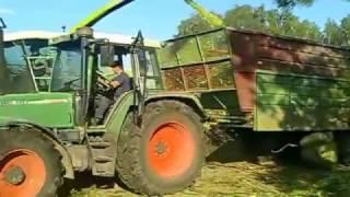 preview picture of video 'UTB REDY koszenie kukurydzy CLAAS JAGUAR 860 fendt podlasie'
