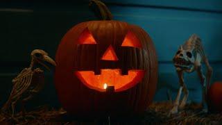 Halloween Kills (2021) Video