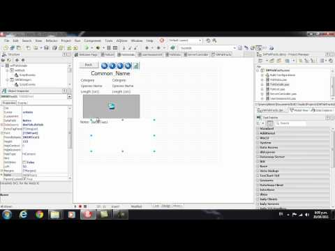 Delphi Programming Tutorial #62 – Intro to IntraWeb