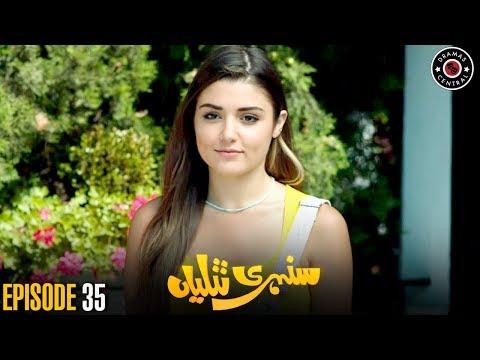 Sunehri Titliyan | Episode 35 | Turkish Drama | Hande Ercel | Best Pakistani Dramas