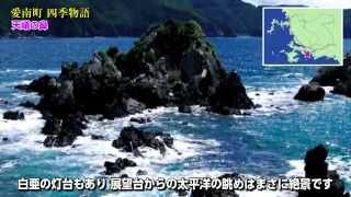 愛南町観光パンフムービー 四季物語(冬編)