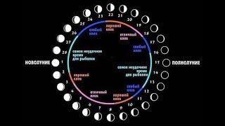 Погода зольская клев лунный календарь