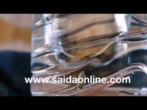 16d93c79fa242 tayyar.org - بالفيديو  فضيحة داخل عبوة مياه معدنية في صيدا.. ماذا ...