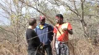 Gem Collector - Mozambique