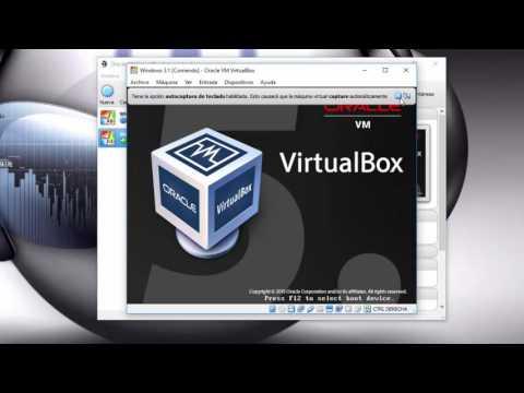 VirtualBox instalar Windows 3.1
