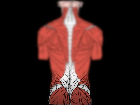 Dolori alle articolazioni e gonfia il corpo