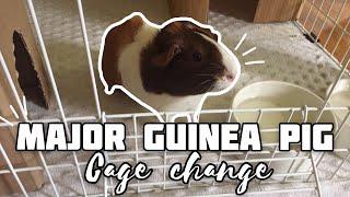 MAJOR Guinea Pig Cage Changes / Part 1