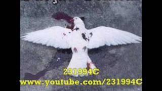 Facção Central - Conversando Com Os Mortos - Video Youtube