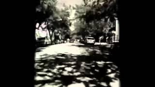 "Zigtebra - ""The Ride"" music video"