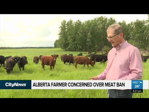 Alberta farmer concerned over China meat ban