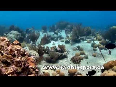 Bonaire Silence, 1000 Steps,Bonaire,Niederländische Antillen