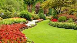 Ideas & Advice: Laying Out Plants And Flowers