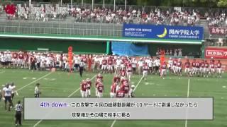 アメリカンフットボール紹介~基本ルール~
