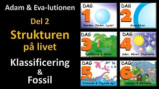 Thumbnail for video: Adam och Eva-lutionen Del 2: Strukturen på livet (Klassificering & Fossil)