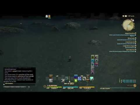 FFXIV - Ghost of Bloodshore (short appearance)