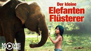 Der kleine Elefantenflüsterer - Ganzen Film kostenlos schauen in HD bei Moviedome