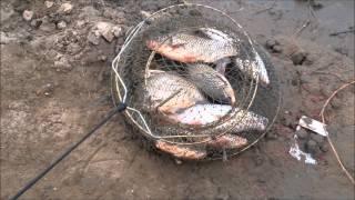 Зимняя рыбалка на реке меша