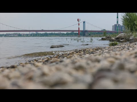 Das Schwimmen im Rhein ist verboten. Wieso es so gefährlich ist erklärt Feuerwehrchef Oliver Tittmann. Was zu tun ist, wenn man selbst oder andere im Rhein in Not geraten erläutert Martin Flasbarth von der DLRG,