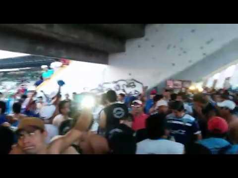 """Vamos academia, Blooming ponga huevo"" Barra: Los Chiflados • Club: Blooming"