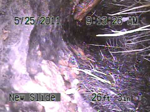 Drain line before Jetting .  Video sewer drain pipe line see snake inspection
