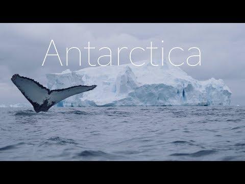 סרטון מרהיב של הנופים והחיים ביבשת הקפואה אנטארקטיקה