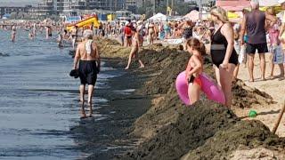 Смотреть онлайн Что можно увидеть на пляже в Анапе