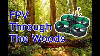 Cinewhoop FPV Drone Woods Exploration Bando