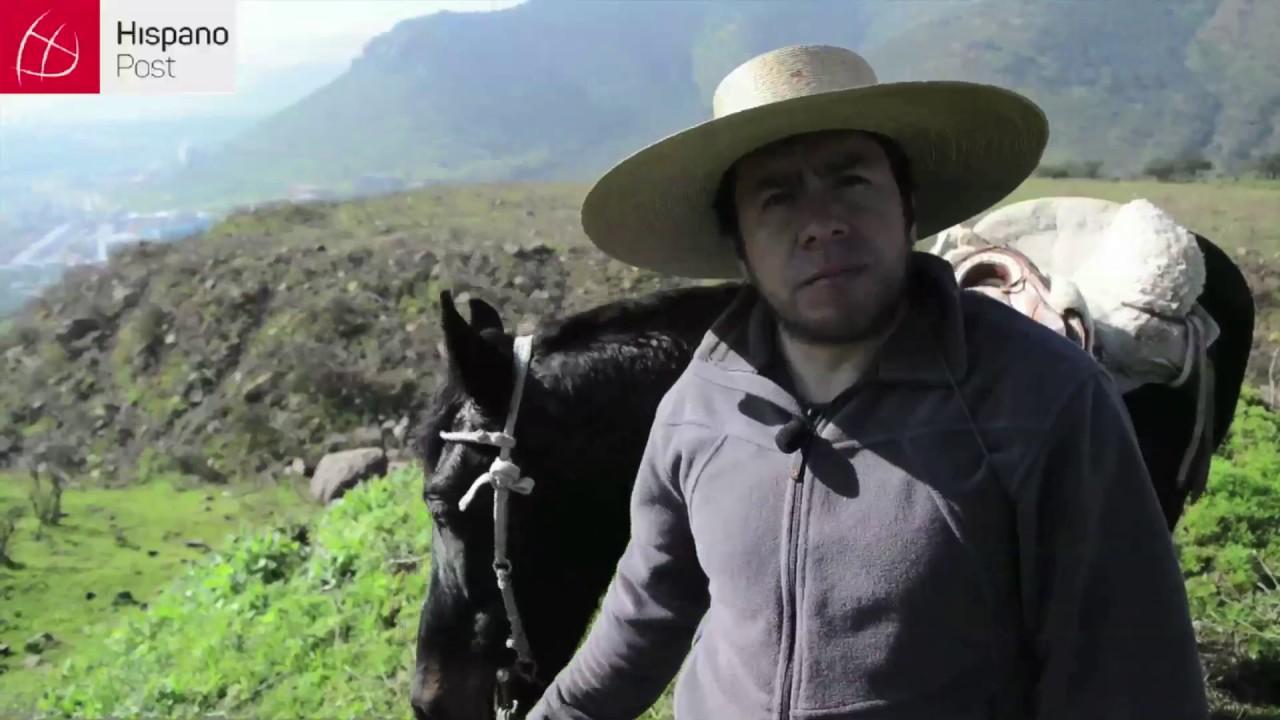El arriero chileno: Cultura en extinción