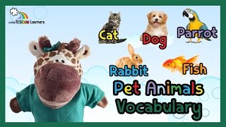 Pet Animals Vocabulary for Preschool, Kids, ESL and Children with Autism