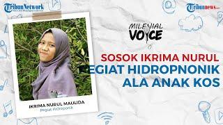 Millennials Voice: Sosok Ikrima Nurul, Pegiat Tanaman Hidroponik Ala Anak Kos