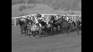 The Dark Side Of Horse Racing