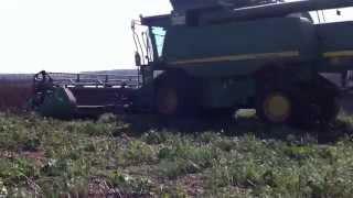 preview picture of video 'Moisson de féverole à la ferme experimentale d'Arvalis à Villiers le Bâcle'
