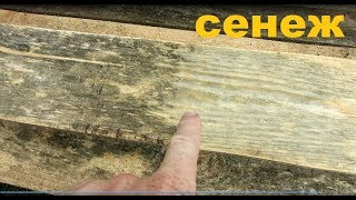 Сенж Эффо состав для отбеливания древесины - 5 л от компании ЭКО-ДОМ - видео