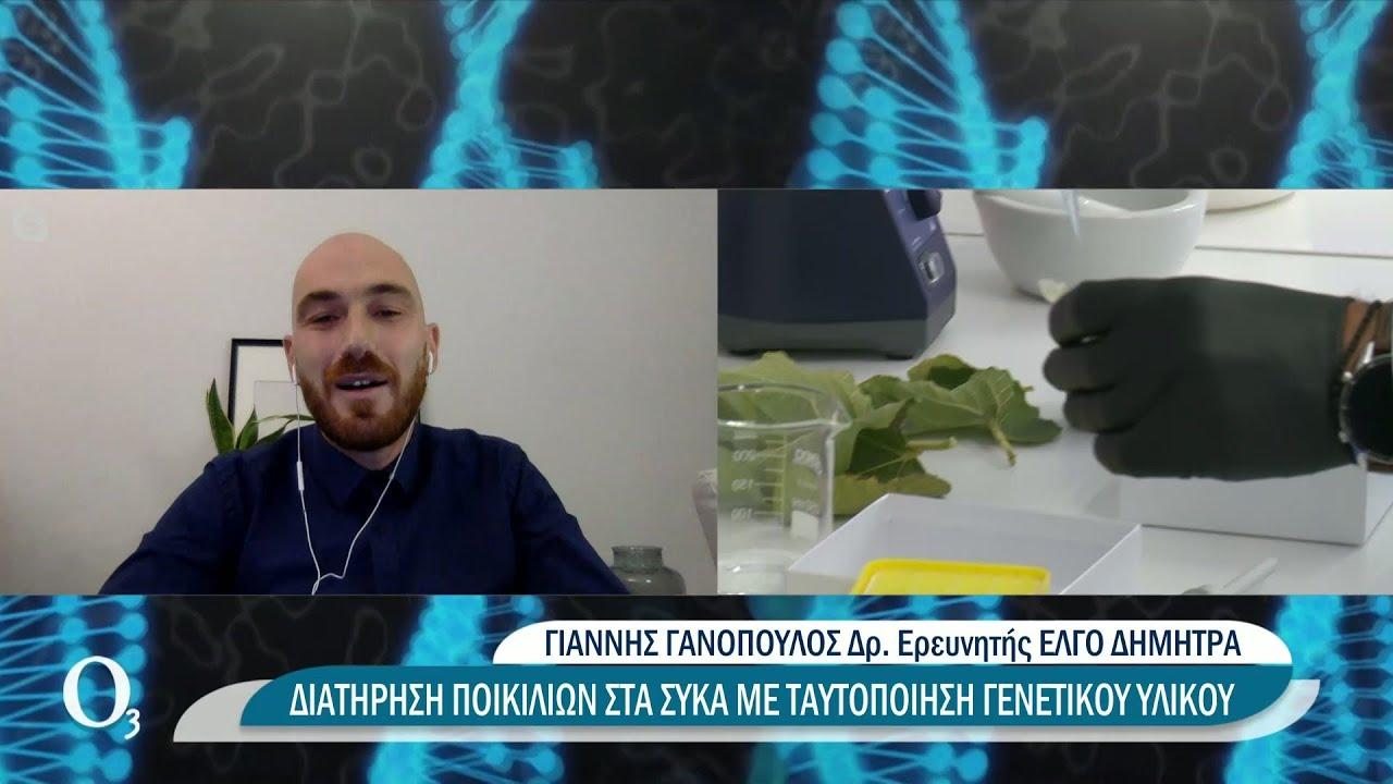 Αναγνωρίζοντας το… δακτυλικό αποτύπωμα του ελληνικού σύκου   11/10/2021   ΕΡΤ