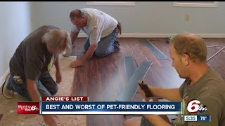 Best and worst pet-friendly flooring