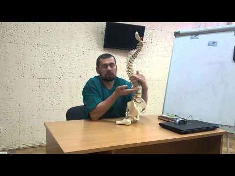Левосторонний пояснично-грудной сколиоз