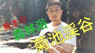 森林浴オススメスポット!〜菊池渓谷熊本〜