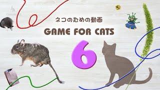 【猫用動画MIX6】ひも・ねずみなど30分 GAME FOR CATS 6