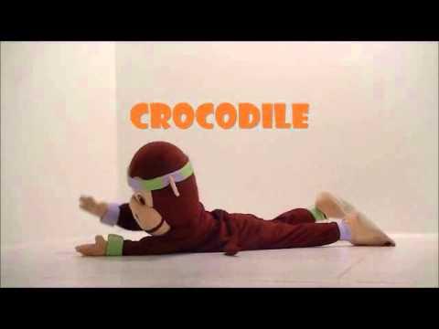 Crocodile PedaYOGA
