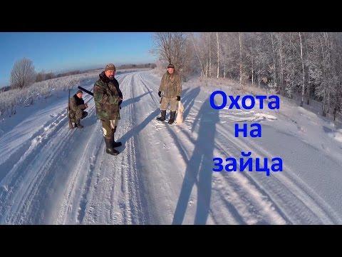 Охота на зайца.  Часть 6. (сезон 2016-2017гг.)