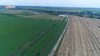 «Контінентал Фармерз Груп» – одна з найбільших агропромислових компаній України