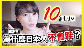 解密!!10個原因日本人為什麼不會胖?|MaoMaoTV