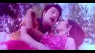 pachai kili muthucharam   MGR song in Ulagam Sutrum valiban   Video   Pagee Video Songs   MyVideo